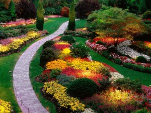 beautifulgarden